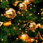 Анонс мероприятий на неделю с 23 по 31 декабря